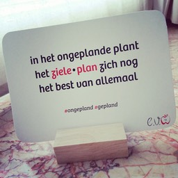 30. ongepland-gepland